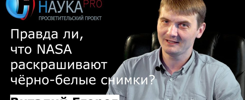 Виталий Егоров Зелёный кот