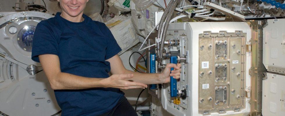 Астронавт NASA Николь Стотт