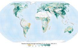 Карта озеленения мира